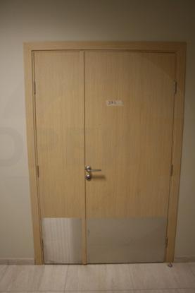 Усиленные двери, серия Интер