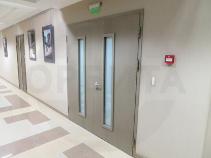 Техническая противопожарная дверь EI-30, пр-во Клин