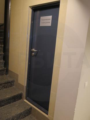 Противопожарная техническая окрашенная деревянная дверь EI-30, пр-во Д.Крафт