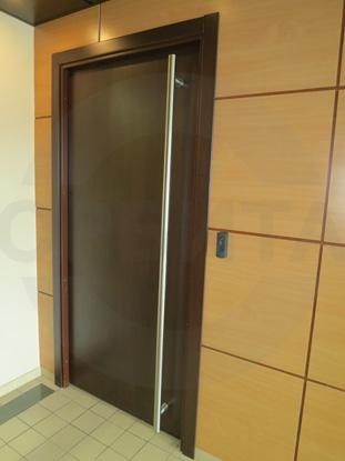 Стальные офисные двери с накладками МДФ покрытыми CPL цвета Дуглас Темный