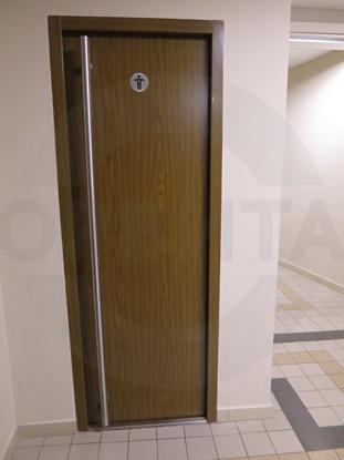 Стальные офисные окрашенные двери